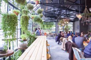 Cây xanh - Nội thất quán cafe giá rẻ